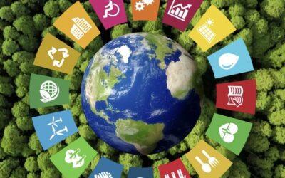 Udržitelnou budoucnost má přinést kobliha